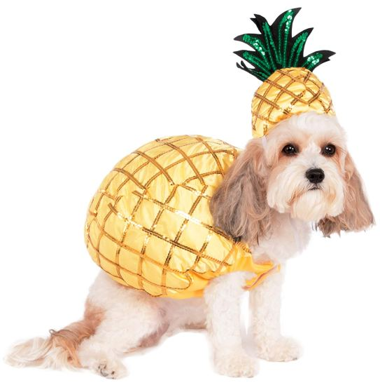 Check out these cool dog costumes for your pooch this Halloween! #cooldogcostumes #funniestdogcostumes #funnydogcostumes #bigdogcostumes #cutedogcostumes #bestdogcostumes #cheapdogcostumes #hilariousdogcostumes